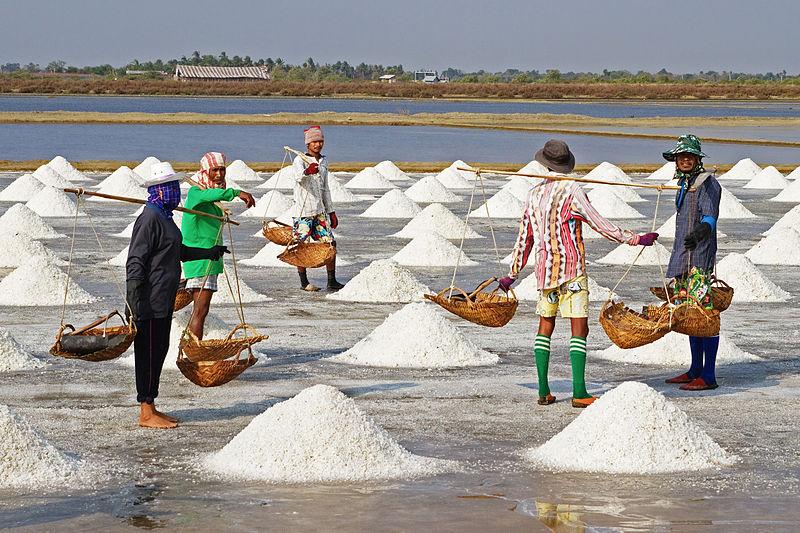 """Résultat de recherche d'images pour """"sel"""""""
